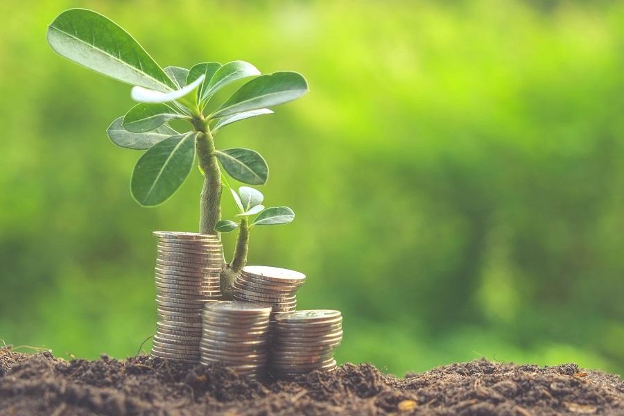 Investissement rural