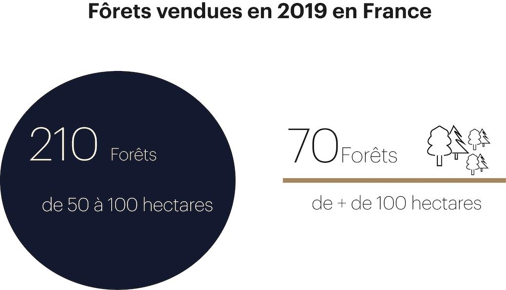 Forêts vendues en 2019